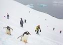 The Last Desert (Antarctica) 20161125-13822016 Kopie