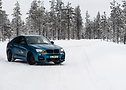 A splash of color in the snow: The blue Hamann