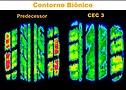 Pneu Original Mobi - ContiEcoContact 3 - Detalhe Tecnologia Contorno Biônico (maior área contato)