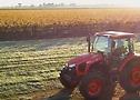 Tractor trabajando en los campos con neumáticos Continental.