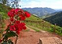 (foto de paisagem de São Francisco Xavier)